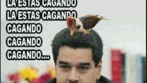 Maduro 3