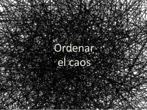orden-6